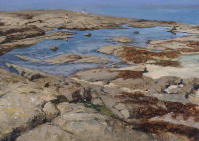 Tide Pool, Sanna Bay Ardnamuchan by Michael Alford